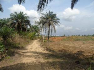 Residential Land Land for sale .. Uyo Akwa Ibom