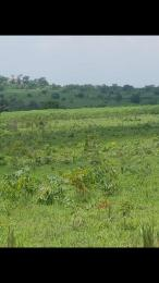 Commercial Land Land for sale Iseyin, Oyo state Iseyin Oyo