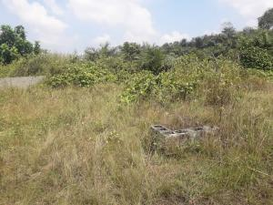 Residential Land Land for sale Freedom way lekki phase one  Lekki Phase 1 Lekki Lagos