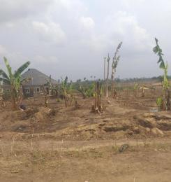 Residential Land Land for sale nwaniba Uyo Akwa Ibom
