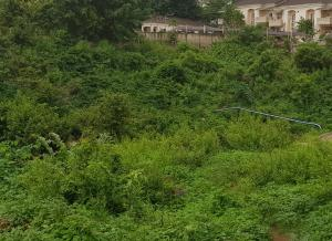Commercial Land Land for sale After Berger Hospital, Dape Abuja
