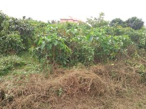 Land for sale off Graceland school road Uyo Akwa Ibom