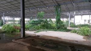 Mixed   Use Land Land for sale Badagry Badagry Lagos