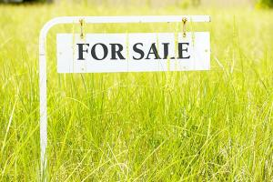 Land for sale Katampe Extension Katampe Ext Abuja