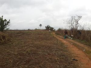 Commercial Land Land for sale along Ajegunle, papa Ilaro road Ogun Obafemi Owode Ogun