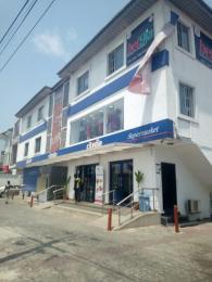 Commercial Property for rent Lekki Phase 1  Lekki Phase 1 Lekki Lagos - 2