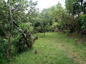 Residential Land Land for sale Apo Dutse, by LIVING FAITH CHURCH JUNCTION Apo Abuja