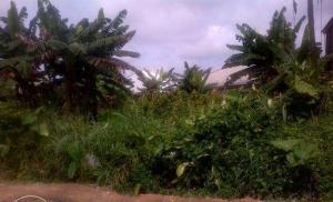 Land for sale Jakpa Road Warri Delta