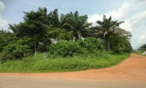 Land for sale Benin City Oredo Edo