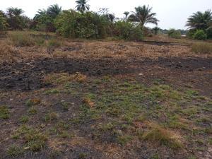 Residential Land Land for sale Oriyonri Town, LFTZ area Ibeju-Lekki Lagos