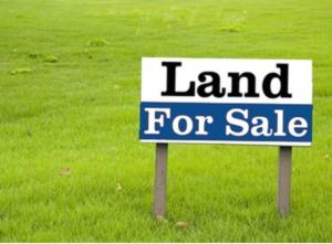 Land for sale OPIC Berger Ojodu Lagos