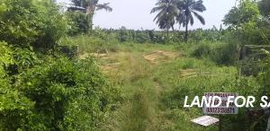 Commercial Property for sale Along Ascon Road, Marina Topo Badagry Badagry Badagry Lagos