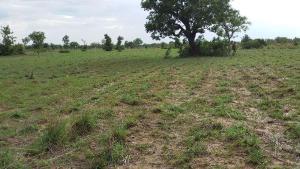 Land for sale Along Port Harcourt Road Obinze Owerri Imo