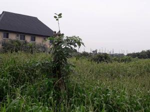 Land for sale Nwobi str, by Elemu Bus stop Bucknor Isolo Lagos