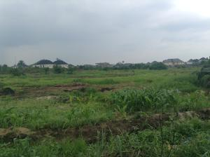 Land for sale Off Eliozu Obio-Akpor Rivers - 0