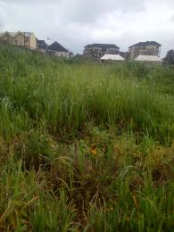 Residential Land Land for rent @ Off Sobo Arobiodu GRA IKeja, Lagos Ikeja GRA Ikeja Lagos