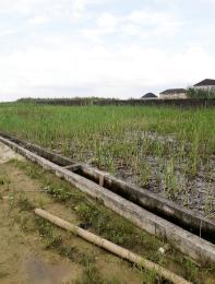 Land for sale Orchid Hotel Road -  Ikota Lekki Lagos