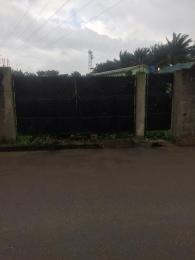 Land for sale Shadia estate  Soluyi Gbagada Lagos