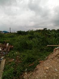 1 bedroom mini flat  Land for sale Olorunda Estate Ketu Lagos