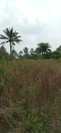 Land for sale Oke ?ba village near ìw? Osun State  Iwo Osun