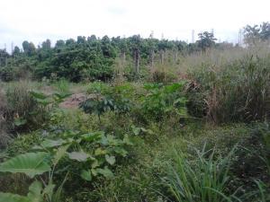 Land for sale Badore Badore Ajah Lagos