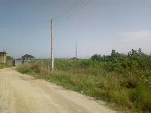 Mixed   Use Land Land for rent ---- Ikota Lekki Lagos
