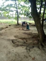 Residential Land Land for sale Lawal street, ogudu ori oke Ogudu-Orike Ogudu Lagos - 3