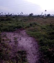 Land for sale ddpa road Sapele Delta