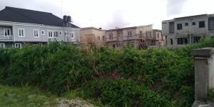 6 bedroom Commercial Land Land for sale Lekki express way ,monastry Sangotedo Ajah Lagos