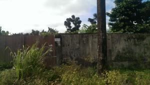 Land for sale Atunrase estate, gbagada Atunrase Medina Gbagada Lagos - 0
