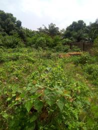 Residential Land Land for sale Fagun Road5 behind Laju Hospital Ondo West Ondo