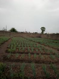 Land for sale phase 2 Ogudu GRA Ogudu Lagos