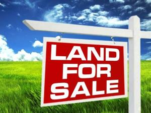 Residential Land Land for sale Omole phase 1 Ojodu Lagos