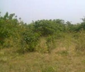 Land for sale Mojisola Onikoyi Estate Ikoyi Lagos