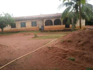 House for sale 11, OGBEMUDIA STREET OFF LUCKY IGBIBEDION WAY Edo