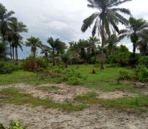 Land for sale Surulere, Lagos, Lagos Surulere Lagos - 0