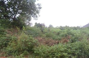 Land for sale Asaba, Oshimili South, Delta Oshimili Delta - 0