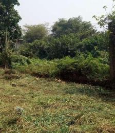 Land for sale Ipaja, Alimosho, Lagos Ipaja Lagos - 0