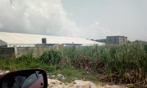 Mixed   Use Land Land for sale Fasoro Lawanson Surulere Lagos