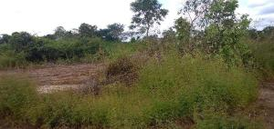 Land for rent Enugu South, Enugu, Enugu Enugu Enugu