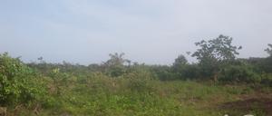 Residential Land Land for sale . Awoyaya Ajah Lagos - 0