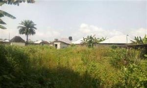 Mixed   Use Land Land for sale  Rumuahalu, Rukphakurusi Port Harcourt Rivers