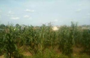 Land for sale Dei-Dei, Abuja Kubwa Abuja - 0
