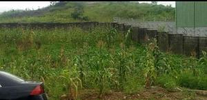 Land for sale Jabi, Abuja Idu Industrial(Institution and Research) Abuja