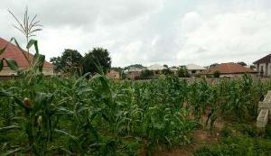 Land for sale Gwarinpa, Abuja, Abuja Life Camp Abuja