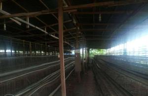 Commercial Property for sale Laspotech Road Ikorodu Lagos - 0