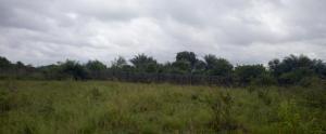 Mixed   Use Land Land for sale Off Lekki-Epe Expressway Eleko Ibeju-Lekki Lagos