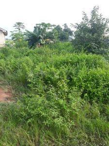 Residential Land Land for sale Siwama likosi road  Ibafo Obafemi Owode Ogun