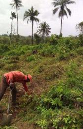 Land for sale Ido, Oyo Ibadan Oyo - 0