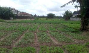 Residential Land Land for sale Post Service Housing Development Estate Iba Ojo Lagos